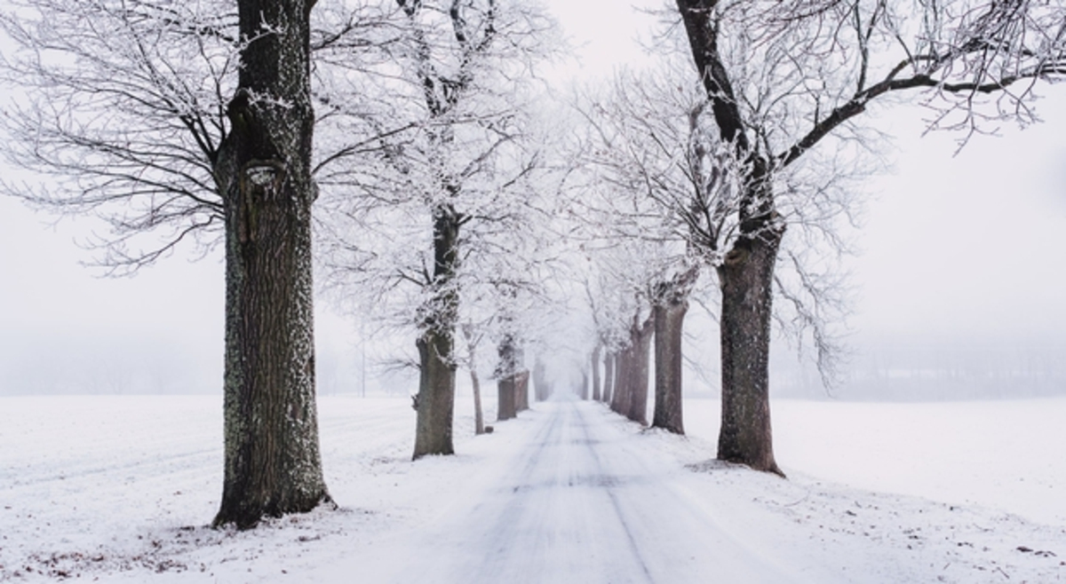 images hiver